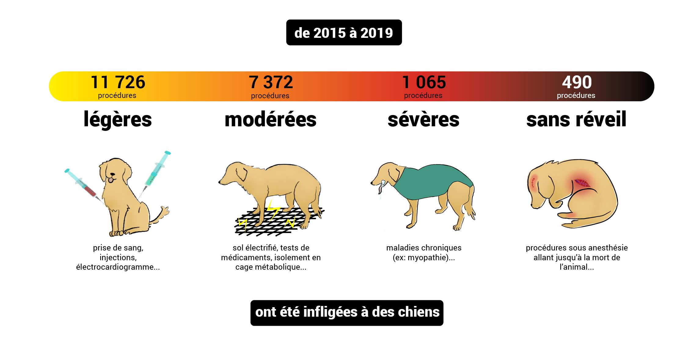 gravités_2015-2019_chiens
