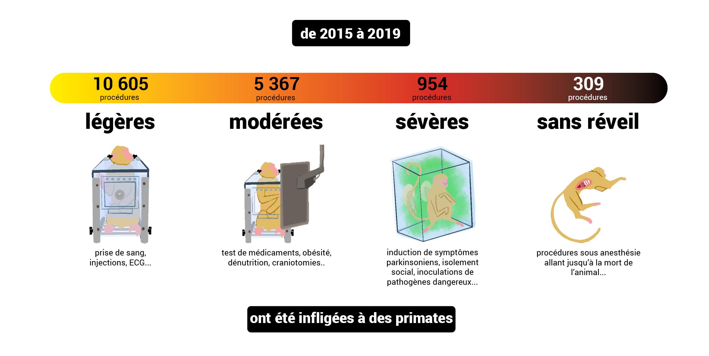gravités_2015-2019_primates